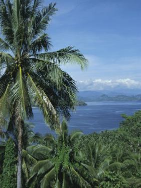 Tropical Coastal Scenery, Bougainville Island, Papua New Guinea, Pacific by Mrs Holdsworth