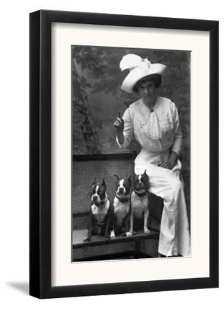 Mrs. Rhoades and Her Three Boston Terriers