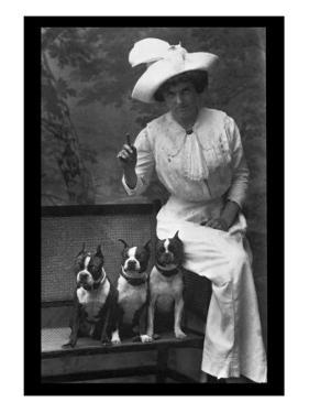 Mrs. Rhoades and Her Three Boston Terriers