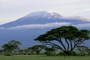 Mt Kilimanjaro in Tanzania