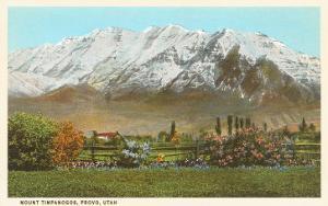 Mt. Timpanogos, Provo, Utah