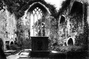 Muckross Abbey, Killarney, C1882
