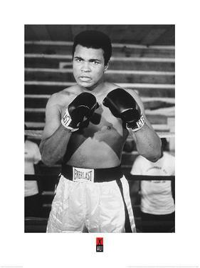 Muhammad Ali- Ready For Action