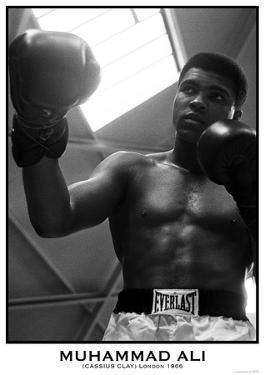 Muhammad Ali- White City, London 18Th May 1966