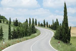 Winding Road, Tuscany, Italy by Multi-bits