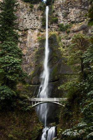 https://imgc.allpostersimages.com/img/posters/multnomah-falls-1_u-L-Q1ASBNV0.jpg?p=0