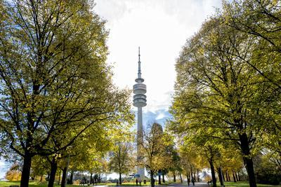 https://imgc.allpostersimages.com/img/posters/munich-bavaria-germany-view-from-the-olympiapark-to-the-communication-tower_u-L-Q11YLZI0.jpg?p=0