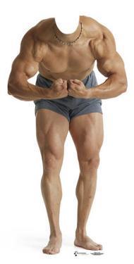 Muscle Man Lifesize Standup