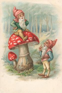 Mushroom with Gnomes