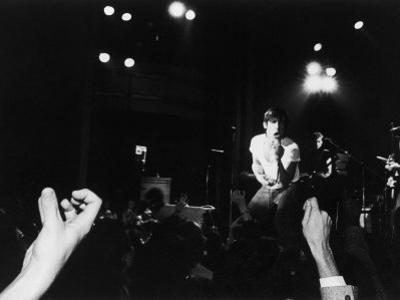 Musician Iggy Pop in Concert