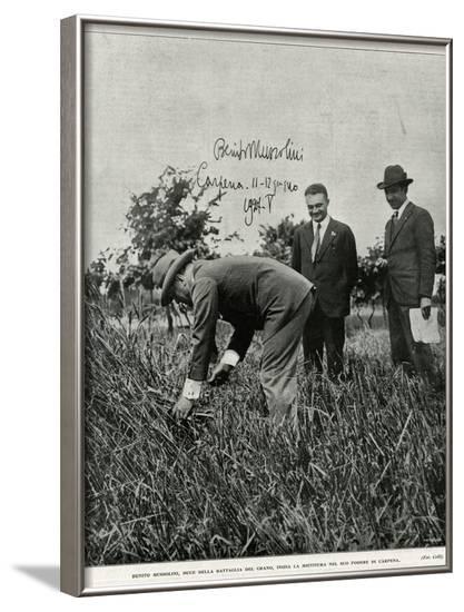 Mussolini, Fieldwork--Framed Photographic Print