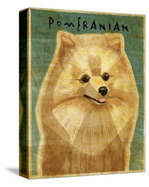 Pomeranian by My Zoetrope