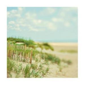 Sand Dunes by Myan Soffia