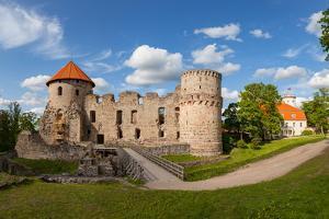 Ruins of old castle in Cesis, Latvia, Europe by Mykola Iegorov