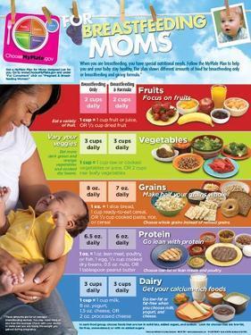MyPlate for Breastfeeding Moms Poster