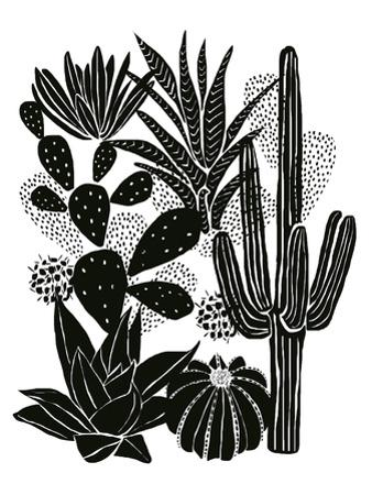 Monochrome Cacti by Myriam Tebbakha