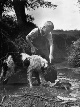 Young Farm Boy Watching His Dog Sniff a Large Turtle at the Pond by Myron Davis