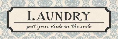Laundry Suds