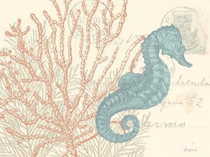 Sea Horse by N. Harbick