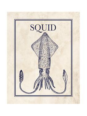 Squid by N. Harbick