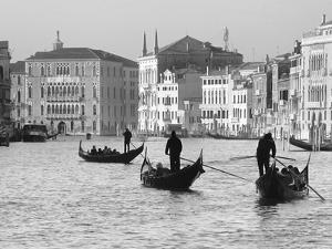 Gondoliers on the Gran Canal, Venice, Veneto Region, Italy by Nadia Isakova