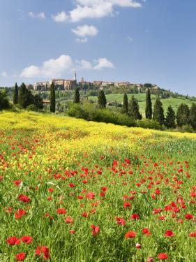 Hill Town Pienza and Field of Poppies, Tuscany, Italy by Nadia Isakova