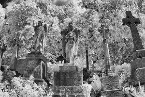 Infrared Image of the Graves in Highgate Cemetery, London, England, UK by Nadia Isakova
