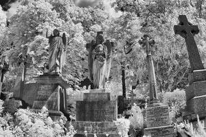 Infrared Image of the Graves in Highgate Cemetery, London, England, UK by Nadia Isakova