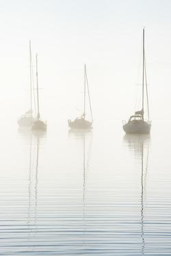 Morning mist on Windermere, Cumbria, UK by Nadia Isakova