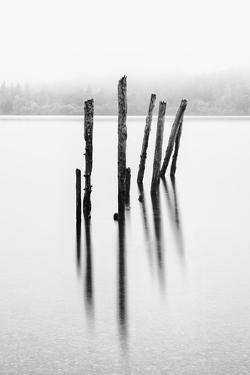 Remains of the old jetty, Derwentwater, Cumbria, UK by Nadia Isakova
