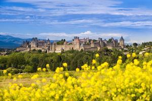 The Fortified City of Carcassonne, Languedoc-Roussillon, France by Nadia Isakova