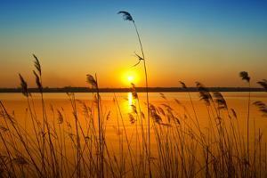 Sunset on the River by nadiya_sergey