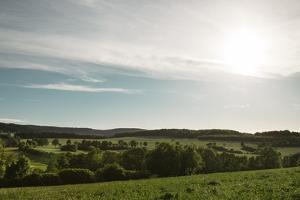 view from the hill of the lavender field to the Teutoburger Forest in Detmold Fromhausen, by Nadja Jacke