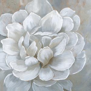Bombshell Bloom I by Nan