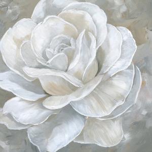 Bombshell Bloom II by Nan