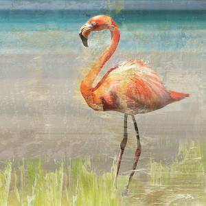 Flamingo Fancy II by Nan