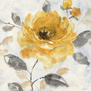 Honey Rose I by Nan