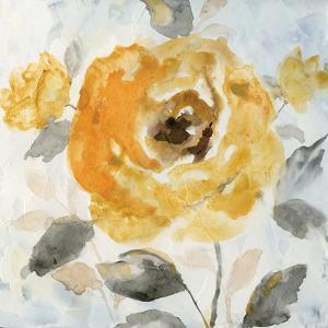 Honey Rose II by Nan