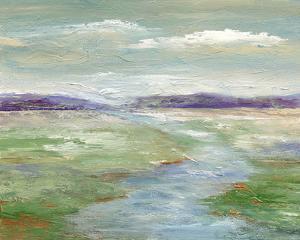 Meadow Stream I by Nan