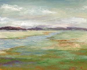 Meadow Stream II by Nan