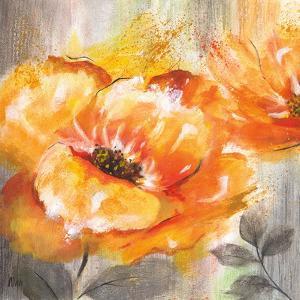 Orange Crush I by Nan