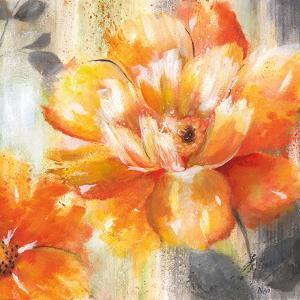 Orange Crush II by Nan
