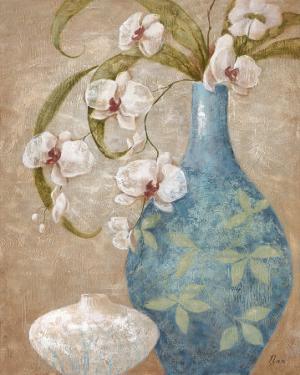 Orchid Grace II by Nan