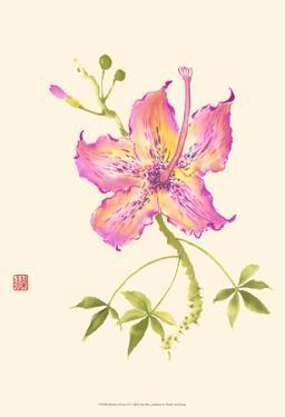 Hibiscus Flower IV by Nan Rae