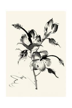 Ink Wash Floral III - Hibiscus by Nan Rae
