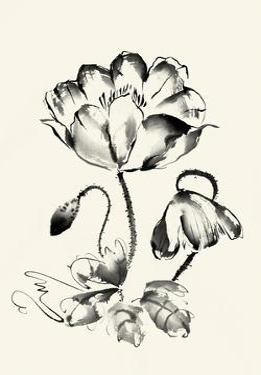 Ink Wash Floral IV - Poppy by Nan Rae