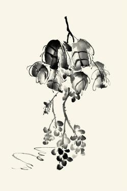 Ink Wash Floral V - Grapes by Nan Rae