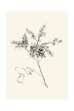 Ink Wash Floral VII - Forsythia by Nan Rae