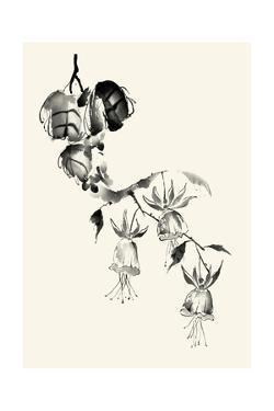 Ink Wash Floral VIII - Fuchsia by Nan Rae