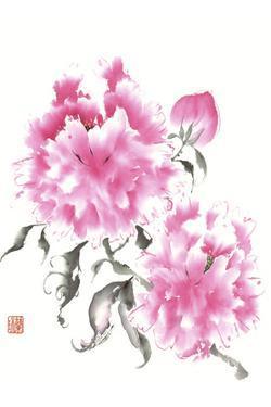 Peonie Blossoms I by Nan Rae